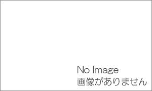 杉並区の街ガイド情報なら|honohono・cafe